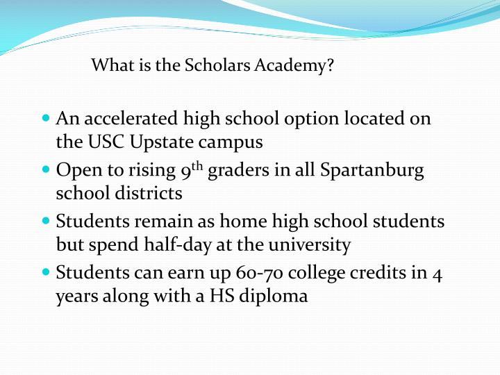 What is the Scholars Academy?