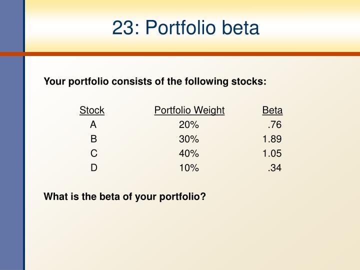 23: Portfolio beta