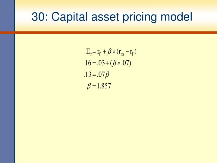 30: Capital asset pricing model