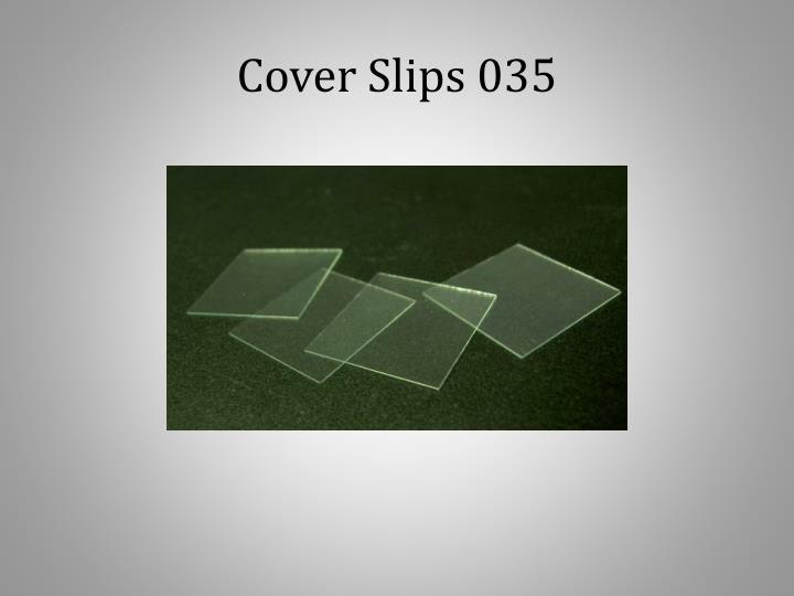 Cover Slips 035