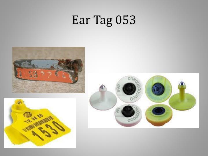 Ear Tag 053
