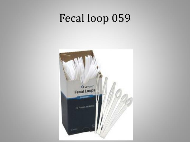 Fecal loop 059