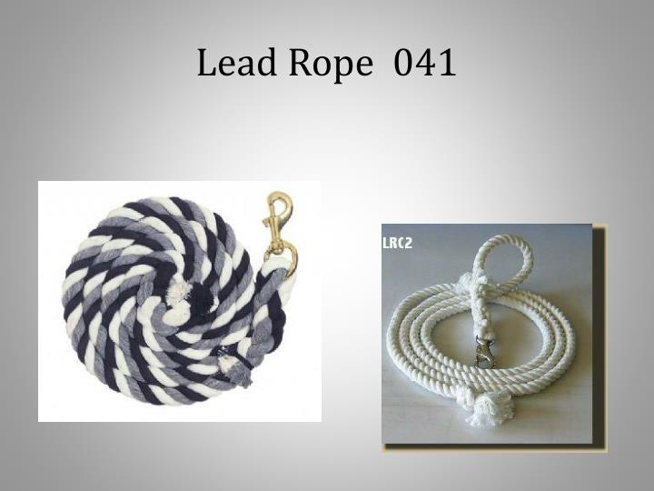 Lead Rope  041