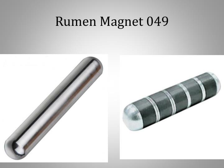 Rumen Magnet 049