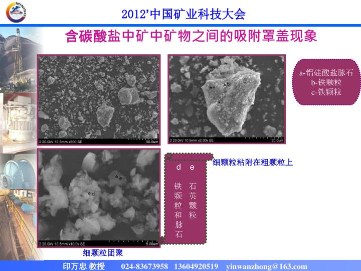含碳酸盐中矿中矿物之间的吸附罩盖现象