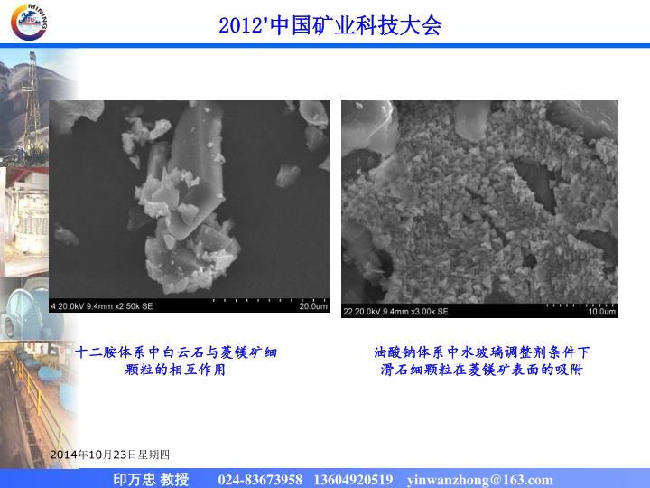 十二胺体系中白云石与菱镁矿细颗粒的相互作用