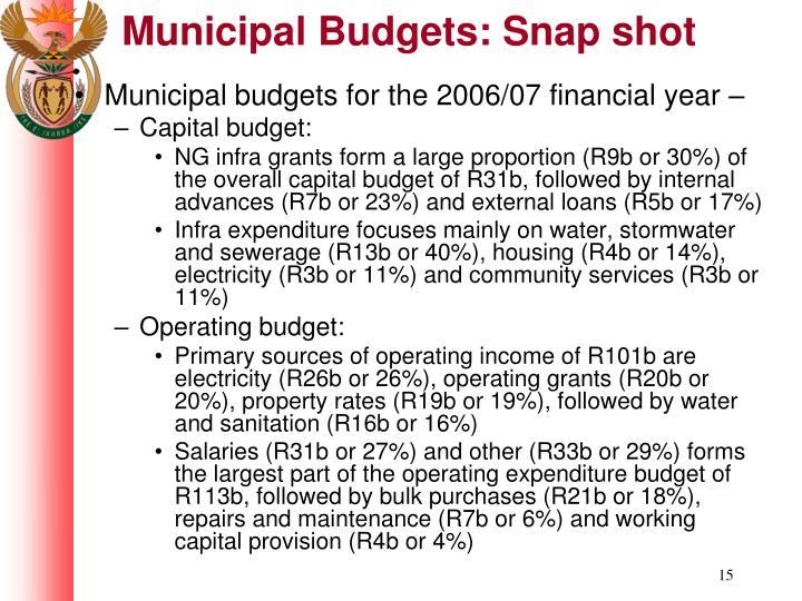 Municipal Budgets: Snap shot