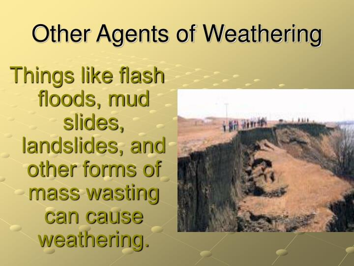 Other Agents of Weathering