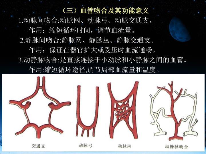 (三)血管吻合及其功能意义