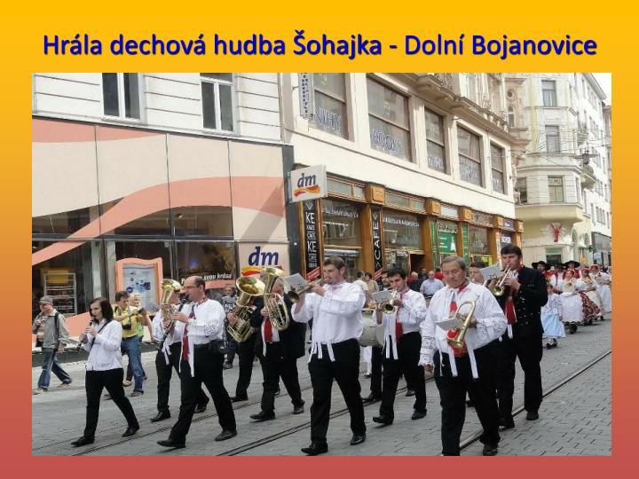 Hrla dechov hudba ohajka - Doln Bojanovice