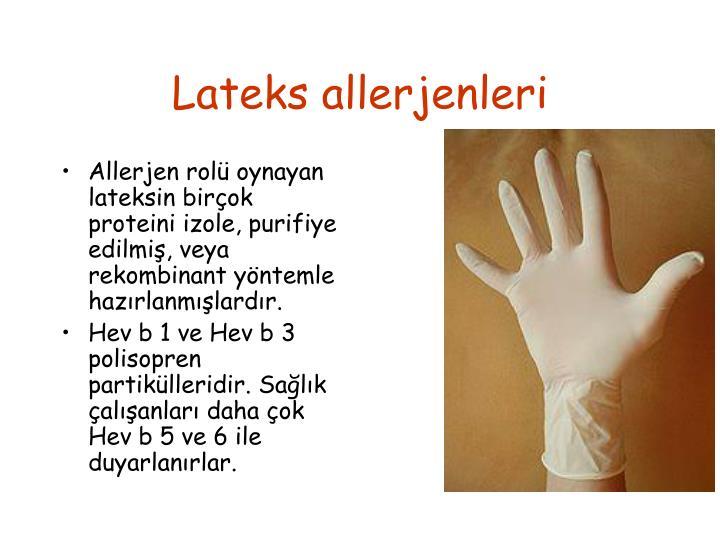 Lateks allerjenleri