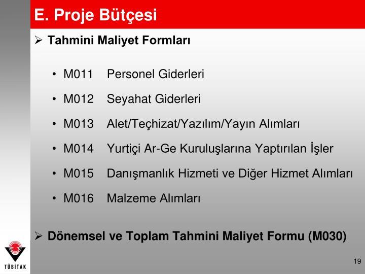 E. Proje Bütçesi