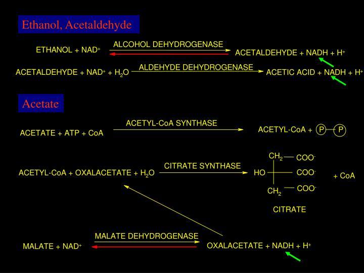 Ethanol, Acetaldehyde