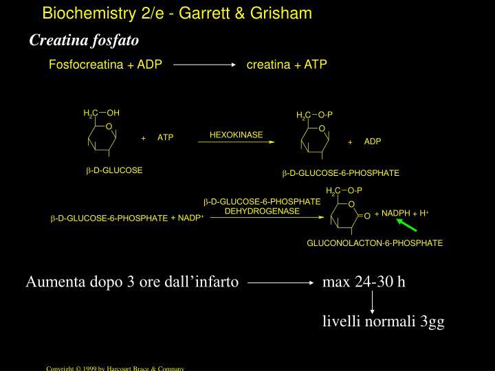 Creatina fosfato