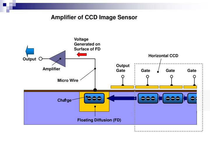 Amplifier of CCD Image Sensor