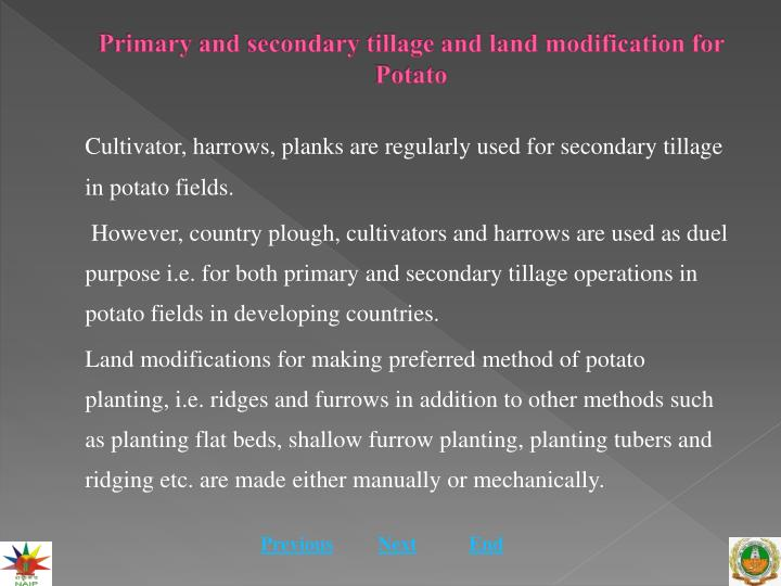 Primary and secondary tillage and land modification for potato2