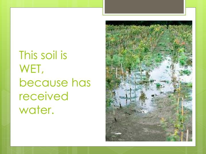 This soil is WET, because has received water.