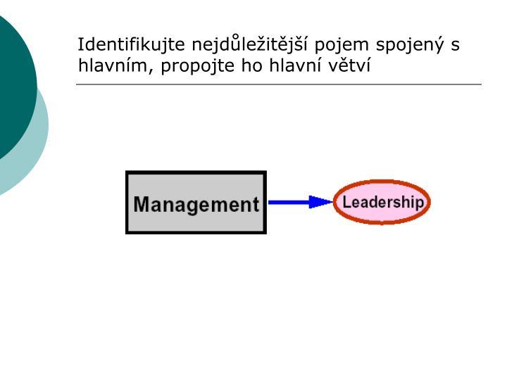 Identifikujte nejdůležitější pojem spojený s hlavním, propojte ho hlavní větví