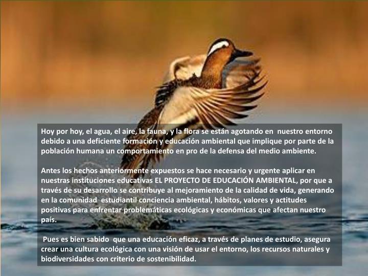 Hoy por hoy, el agua, el aire, la fauna, y la flora se están agotando en  nuestro entorno debido a una deficiente formación y educación ambiental que implique por parte de la población humana un comportamiento en pro de la defensa del medio ambiente.