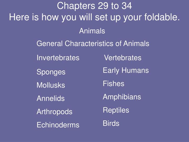 Chapters 29 to 34 here is how you will set up your foldable