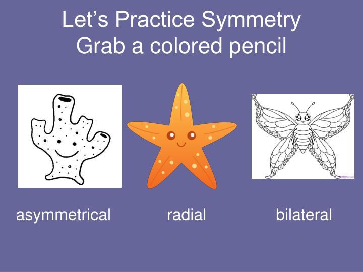 Let's Practice Symmetry