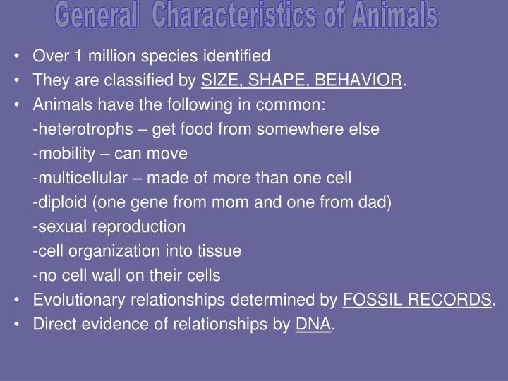 General  Characteristics of Animals