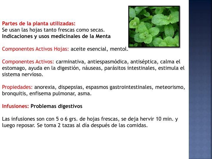 Partes de la planta utilizadas: