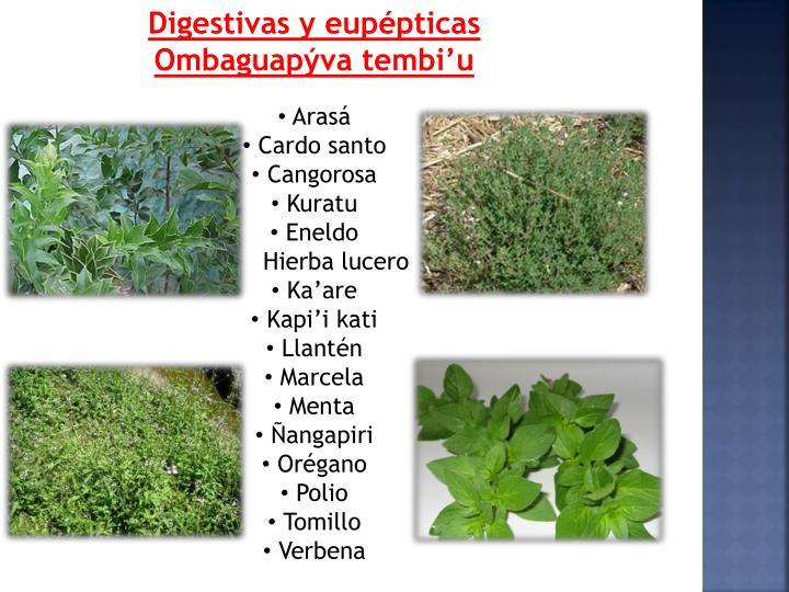 Digestivas y eupépticas