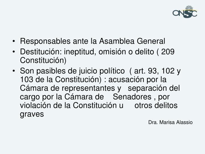 Responsables ante la Asamblea General