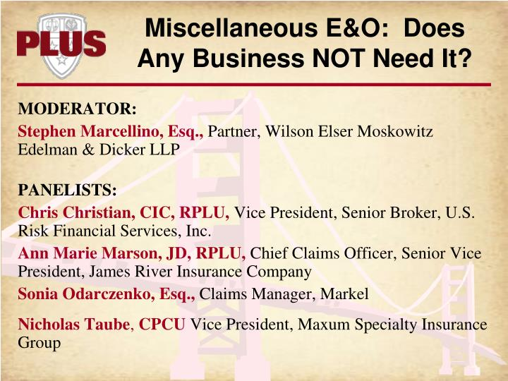 Miscellaneous E&O:  Does Any Business NOT Need It?