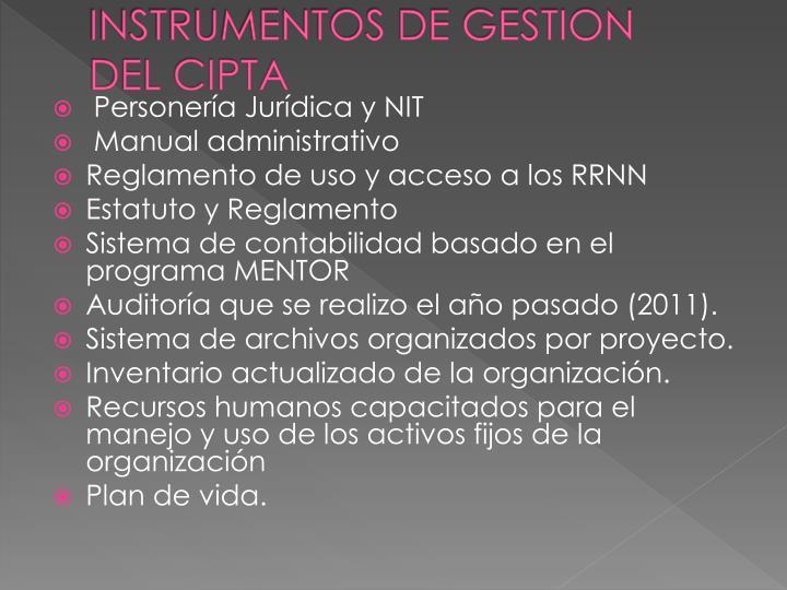 INSTRUMENTOS DE GESTION