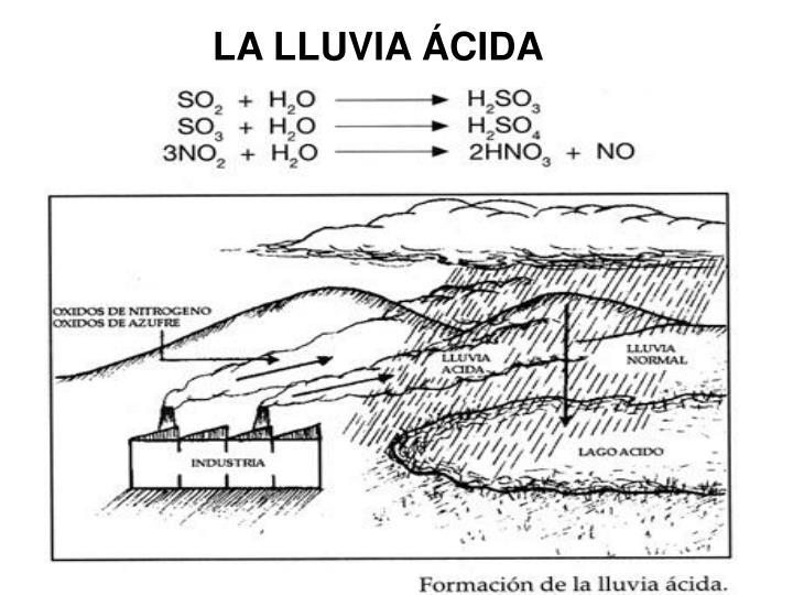 LA LLUVIA ÁCIDA