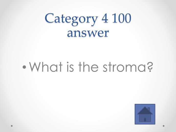 Category 4 100