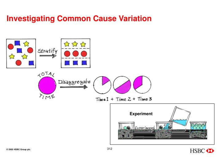 Investigating Common Cause Variation
