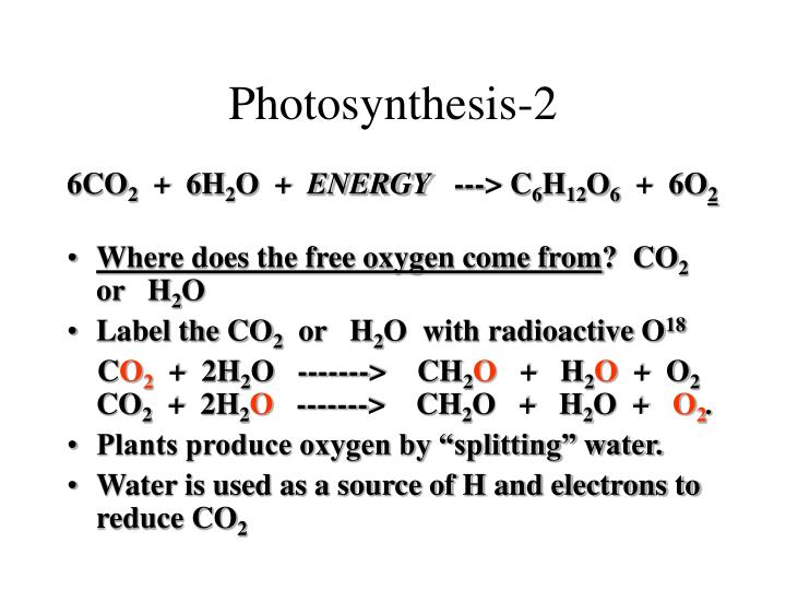 Photosynthesis-2