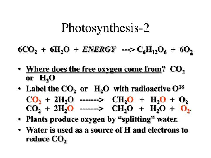 Photosynthesis-2