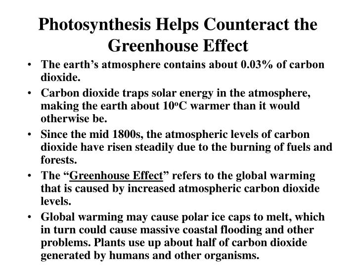 Photosynthesis Helps Counteract the  Greenhouse Effect