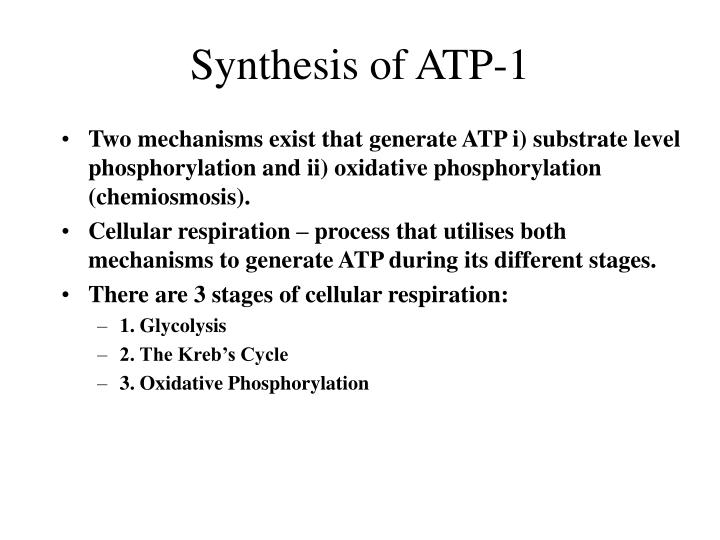 Synthesis of ATP-1