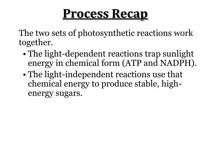 Process Recap