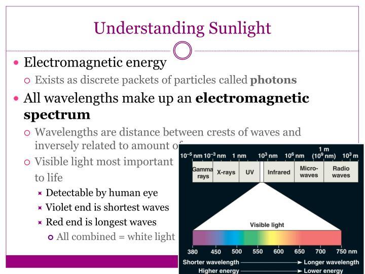 Understanding Sunlight