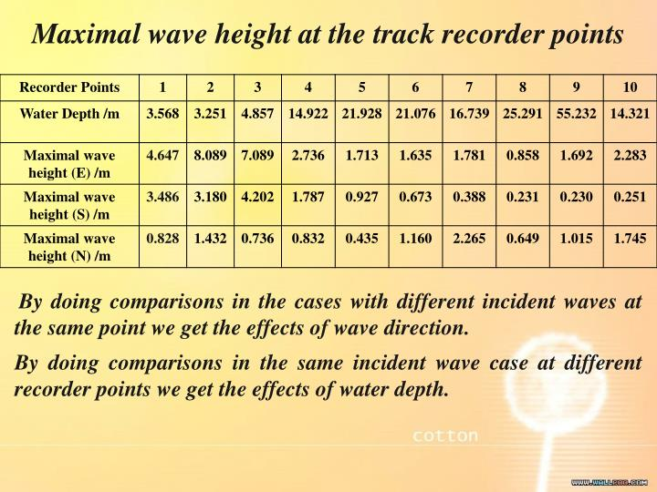 Maximal wave height at the track recorder points