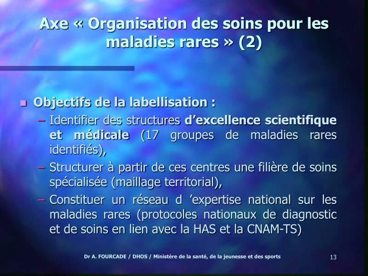 Axe «Organisation des soins pour les maladies rares» (2)