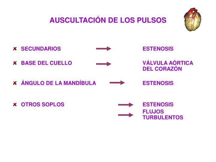 AUSCULTACIÓN DE LOS PULSOS