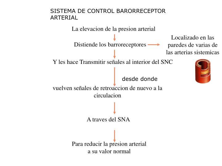 SISTEMA DE CONTROL BARORRECEPTOR ARTERIAL