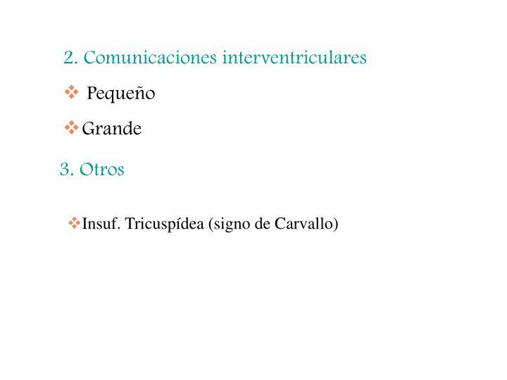 2. Comunicaciones interventriculares