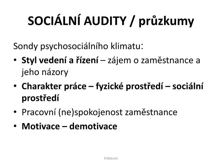 SOCIÁLNÍ AUDITY / průzkumy