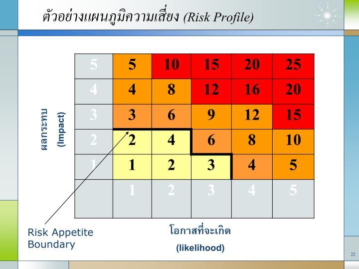 (Risk Profile)