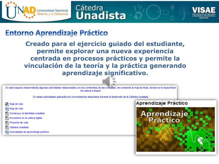 Entorno Aprendizaje Práctico