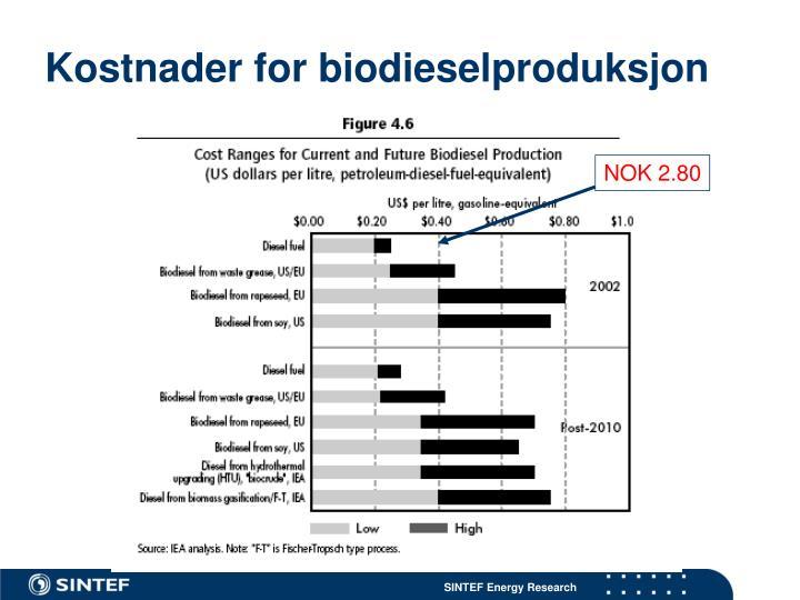 Kostnader for biodieselproduksjon