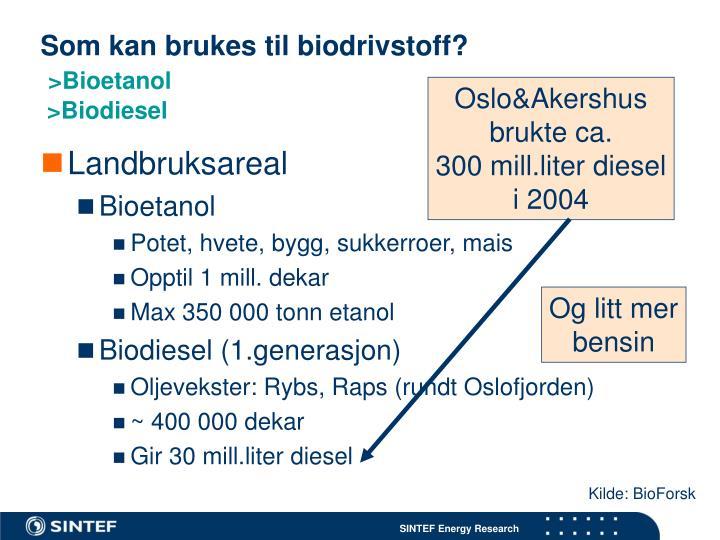 Som kan brukes til biodrivstoff?